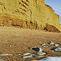 Burton Bradstock Beach by Rod McLean