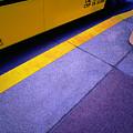 Bus Stop by Paul Wear