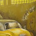 Buscando La Sombra by Tomas Castano