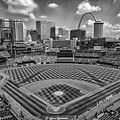 Busch Stadium St. Louis Cardinals Black White Ballpark Village by David Haskett II