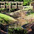Buschman Park Bridge by Deborah Benoit