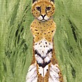 Bush Cat by Jamie Frier