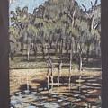 Bush Dam Impression by Serena Valerie Dolinska