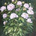 Bush Of Pink Peonies by Zangar Beisembinov