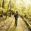 Bushwalking Tasmania by Jorgo Photography - Wall Art Gallery