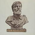Bust Of Paracelsus by Joseph Goldberg