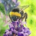 Busy Bumblebee by Martine Venis-Heethaar