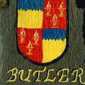 Butler Family Shield by Barbara McDevitt