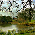 Butlers Retreat Epping Forest Uk by Kurt Van Wagner