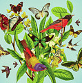 Butterflies And Birds On Plant And Flower Stem by Mark Weaver