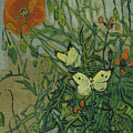 Butterflies And Poppies, 1890.  by Vincent van Gogh