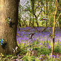 Butterflies In A Bluebell Woodland by Simon Bratt Photography LRPS