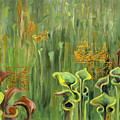 Butterflies In The Bog by Suzanne McKee
