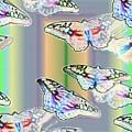 Butterflies In The Vortex by Tim Allen