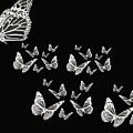 Butterflies by Lourry Legarde