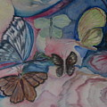 Butterflies by Marian Hebert