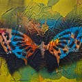 Butterfly 01 by Alice Schwager