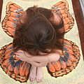 Butterfly 053 by Lucky Cole