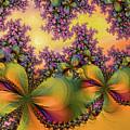 Butterflies 2 by Alexandru Bucovineanu