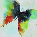 Butterfly 2 by Karen Fleschler