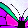 Butterfly by Apurva Madia