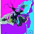 Butterfly Art By Lisa Kaiser by Lisa Kaiser