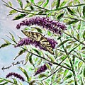 Butterfly Bush by Monique Faella