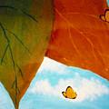Butterfly by Christian  Hidalgo