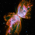 Butterfly Emerges From Stellar Demise by Marco Oliveira
