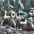 Butterfly Graffiti by Dorothy Hilde