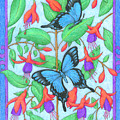Butterfly Idyll-fuchsias by Alison Stein