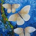 Butterfly In Blue 4 by Stella Velka