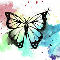 Butterfly In Watercolor And India Ink by Emily Page