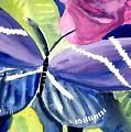Butterfly by Janet Doggett