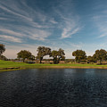 Butterfly Lake At Middleton Place by Dale Powell