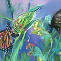 Butterfly Mammas by Lori Harris