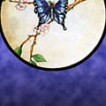 Butterfly Moon by Janice T Keller-Kimball