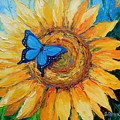 Butterfly On Sunflower by Olha Darchuk