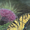 Butterfly On Thistle 2010 by Cheryl Johnson