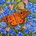 Butterfly Orange by Caroline Street