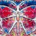 Butterfly by Pruthvi Indla