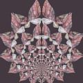 Butterfly Rock by MSB Lane