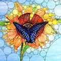 Butterfly Sunday After The Rain by Kimberlee Baxter