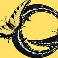 Butterfly Twist by Sandra O'Toole