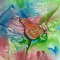 Butterfly W Print by Mary Lomma