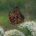 Butterfly Waters by Dottie Dees