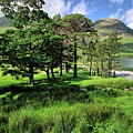Buttermere Pines by Smart Aviation