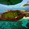 Buzzing The Dry Tortugas by Susan Vineyard