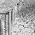 Bw Fence Line by Erick Schmidt