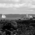 Bw Lighthouse And Sailboat by Barbara Henry